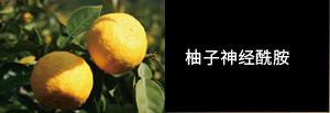 柚子神经酰胺