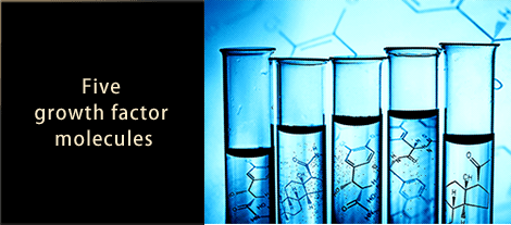 Five  growth factor  molecules